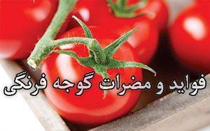 از فواید و مضرات گوجه فرنگی چه میدانید