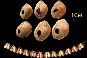 عکس هایی از جواهرات مربوط به 130،000 سال پیش