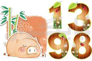 فال سال 1398 – طالع بینی سال 1398 – سال خوک