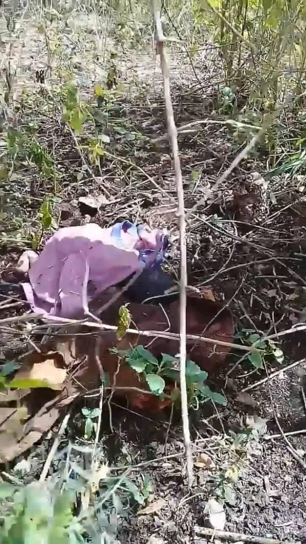 بدن کودک رها شده در جنگل لانه حشرات شد (عکس)