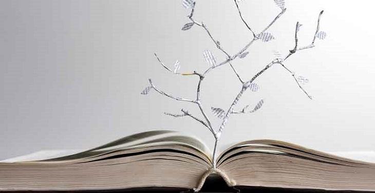 16 درس مهم در زندگی که هر فرد باید چندین بار آنها را یاد بگیرد