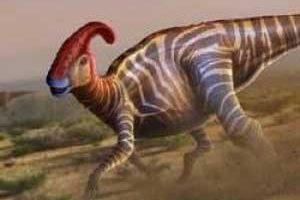 کشف عجیب تخم دایناسور در چین (عکس)