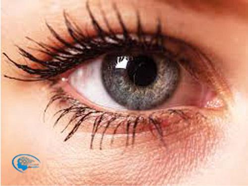 عوامل موثر در رنگ چشم ها