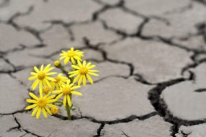 جملات انگیزشی زیبا و الهام بخش برای زندگی