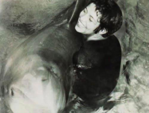 رابطه جنسی عجیب این خانم با دلفین! (عکس)