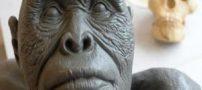 کشف نخستین سکونتگاه انسان های اولیه (عکس)