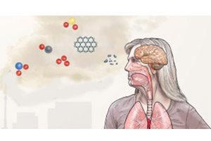 تاثیرات مخرب آلودگی بر روی مغز انسان