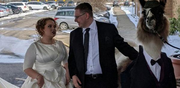 ناراحتی عروس خانم از سورپرایز جشن ازدواجش (عکس)