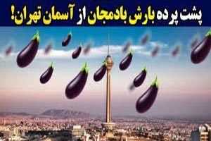 جزئیات بارش بادمجان از آسمان تهران ( فیلم و عکس )