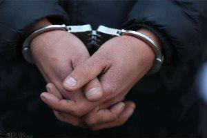 دستگیری سه پسر ایرانی بخاطر چالش سگ شدن (فیلم)
