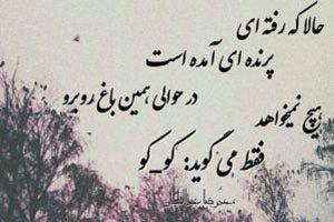 شعر عاشقانه شعر فارسي شعر