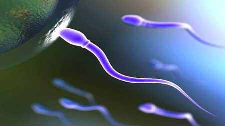علت ژله ای شدن اسپرم و درمان آن