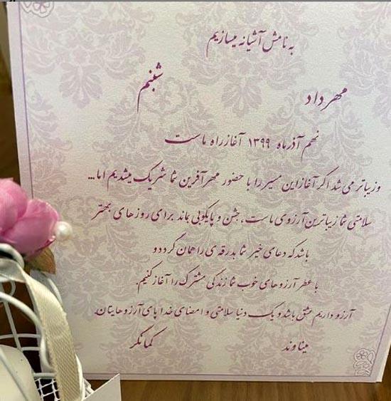 بیوگرافی و عکسهای شبنم کمانگر همسر مهرداد میناوند