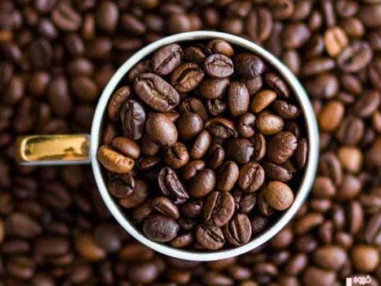 با گران ترین قهوه جهان آشنا شوید + عکس