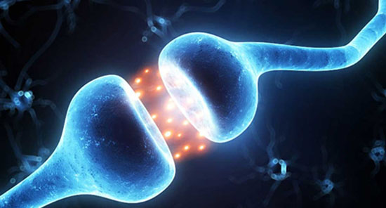 چگونه بفهمیم هورمون های مردانه افزایش یافته یا نه؟