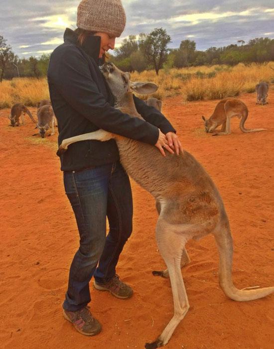 مهربان ترین کانگورویی که تا به حال دیده اید + عکس