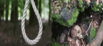 جنگلی ترسناک که اگر به آنجا بروید ناخودآگاه خودکشی میکنید + عکس
