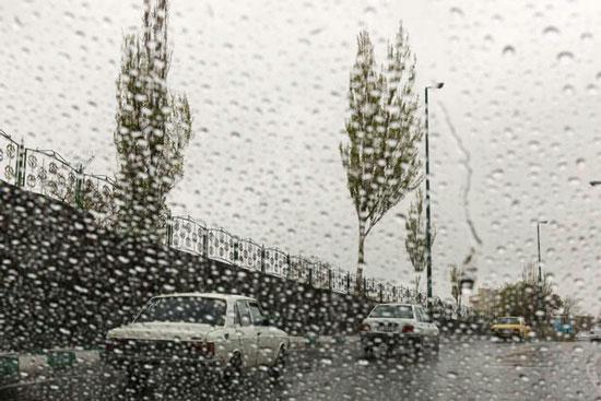 10 مورد از عجیب و غریب ترین بارش های باران در جهان
