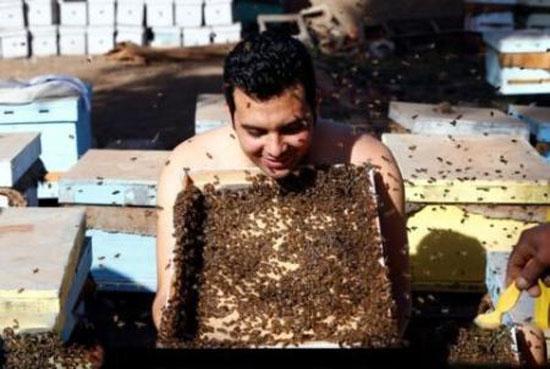 مردی که صورتش را تبدیل به خانه ای برای زنبور های عسل کرد + عکس