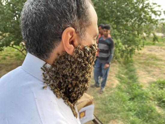 240 هزار نیش زنبور روی صورت این مرد عجیب + عکس