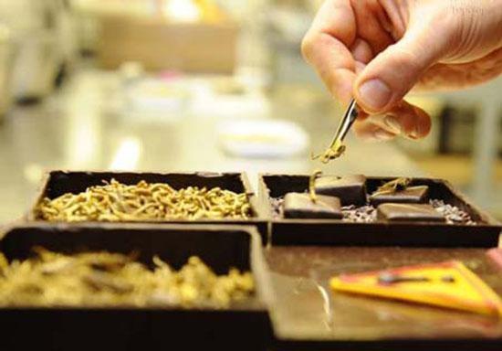 تزئین جالب شکلات ها با حشرات موذی مثل ملخ