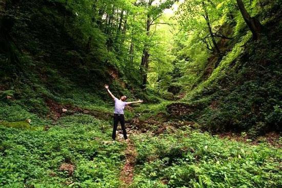عکس های زیبا و دیدنی از رامسر و جنگل دالخانی
