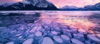 دریاچه آبراهام و حباب های خیره کننده زیر دریاچه