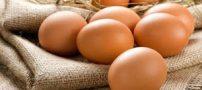 تولید تخم مرغ با طعم میوه توسط ژاپن + عکس