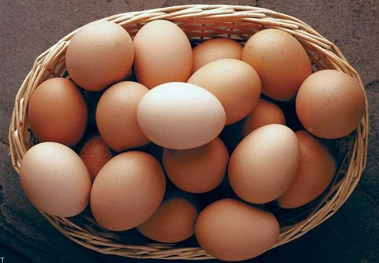 سن تخم مرغ و روش های تشخیص سالم بودن یا فاسد شدن تخم مرغ