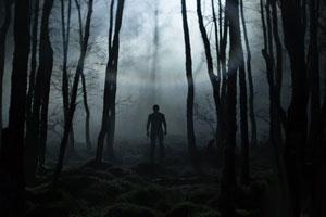 جنگل نفرین شده مشهد را بهتر بشناسید + عکس