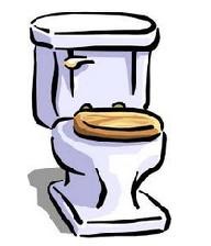 زندگی یک زن در توالت