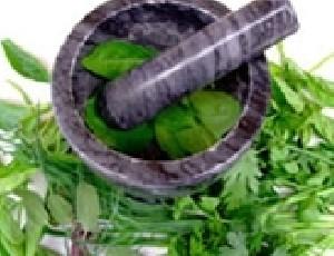 خواص برخی از گیاهان برای ترک اضطراب