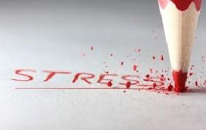 واکنش استرس  یا واکنش جنگ و گریز