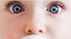 باکتری های موجود در شیر مادر چند دسته است؟