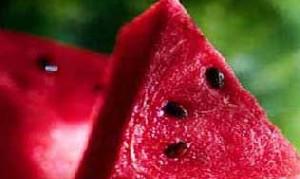 هندوانه و نوع تغذیه برای افراد