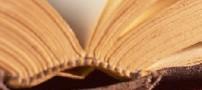 شعر اگر چه باده فرحبخش و باد گلبیز است