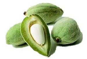 میوهٔ درخت بادام و خواص آن