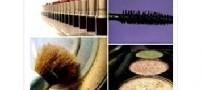 مواد آرایشی فاسد را چگونه تشخیص دهیم؟