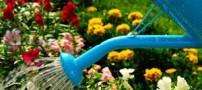 باغ رابطه زناشویی زیبایمان این گونه بسازیم