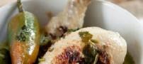 خورش مرغ هندی به سبک مدرن