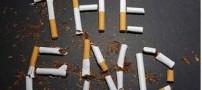 ترک سیگار با کمک گیاهان اما چگونه؟