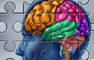 کاهش کارایی غده هیپوکامپ مغز