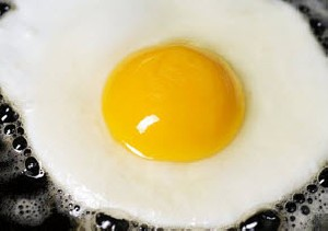 چرا باید تخممرغ بخوریم؟شما می دانید؟