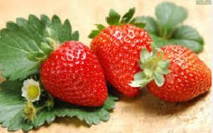 مواد معدنی و ویتامین ها در میوه ها