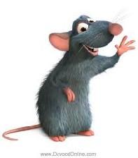 حکایت بسیار جالب و خواندنی موش