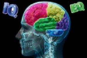 تفاوت میان IQ و  EQ  افراد در چیست؟