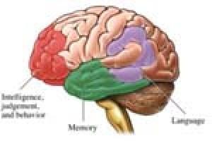 تومور مغزی و علائم آشکار این بیماری