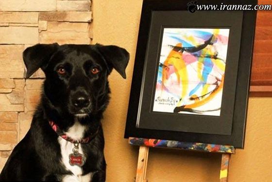 عکس های دیدنی از نقاشی های خارق العاده یک سگ
