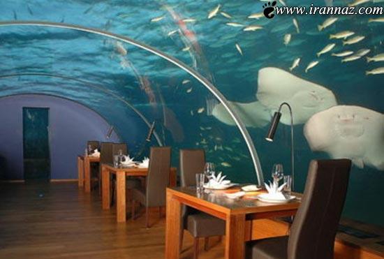 عكس هایی دیدنی از یک رستوران بسیار زیبا در زیر دریا