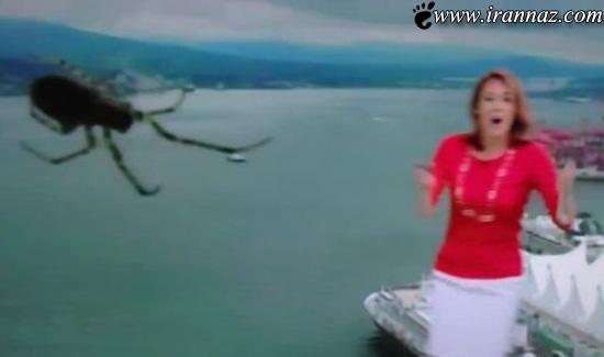 فرار مجری زن از برنامه زنده پس از دیدن عنکبوت (عکس)